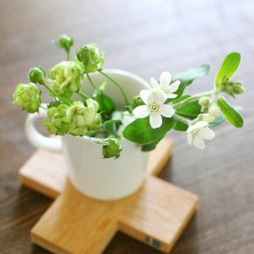 【特集 花屋のまかない】第6話:お花を活けるのは自由と気軽さが一番!