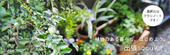 植物のある暮らし、はじめよう。