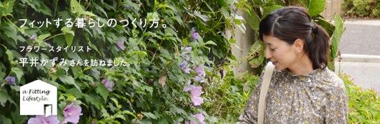 hiraikazumi_main2_20130805