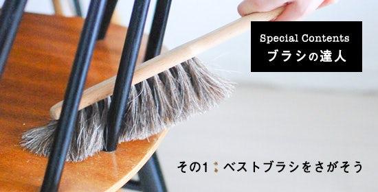 brush_1day_top_1