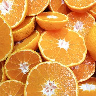 【再販】果実もピールもまるごと使った「温州みかんのジャム」が再び登場です。