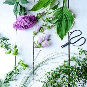 【特集|暑さを忘れる、夏の花】第2話:涼しげなグリーンに、ほんの少しのお花をプラス。