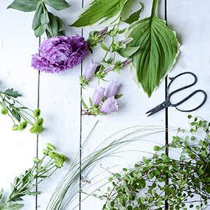【特集 暑さを忘れる、夏の花】第2話:涼しげなグリーンに、ほんの少しのお花をプラス。
