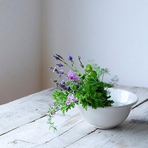 【特集|暑さを忘れる、夏の花】第3話:香りもまるごと涼やかハーブ。