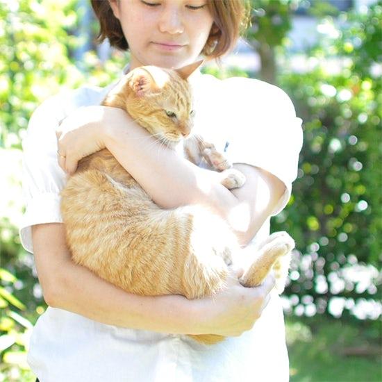 【イヌとネコのエピソード】第1話:ミューちゃんは私が拾ったネコなんです