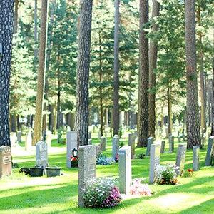 【北欧さんぽ】スウェーデン4:自然と建築が融合。うつくしすぎる「森の墓地」