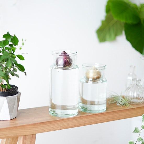 【新商品】楽しく育てる球根ライフ♪フラワーベースとしても使える、理想の花瓶を見つけました!