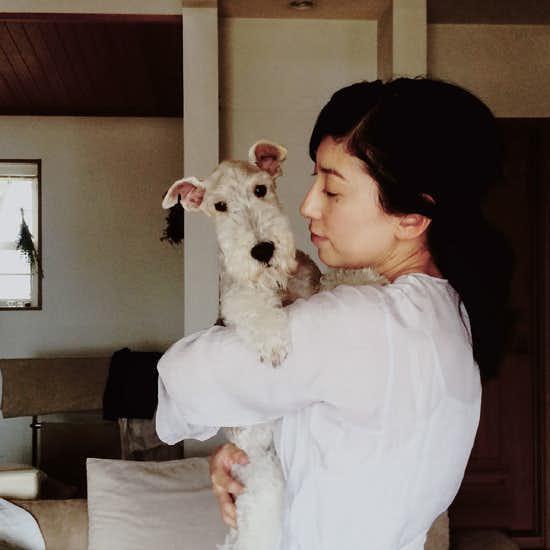 dog_hirai_004