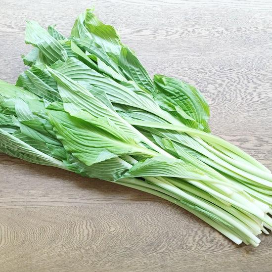 【クラシコムの社員食堂】春の野菜「うるい」がすっかり大きくなる季節になりました。