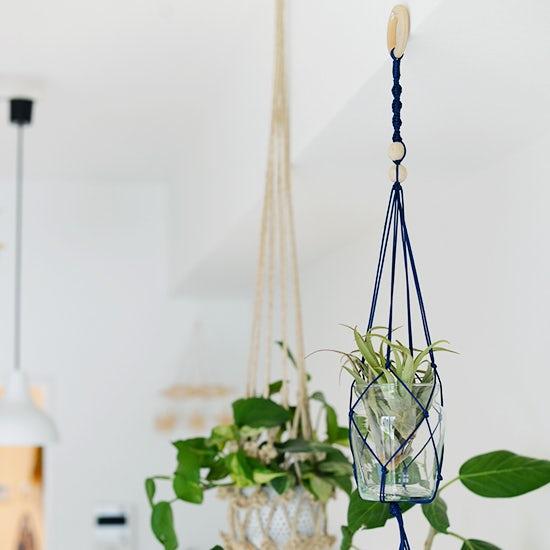 【店長佐藤の愛用品】マンションでも気軽に「吊り下げるグリーン」を楽しめる。