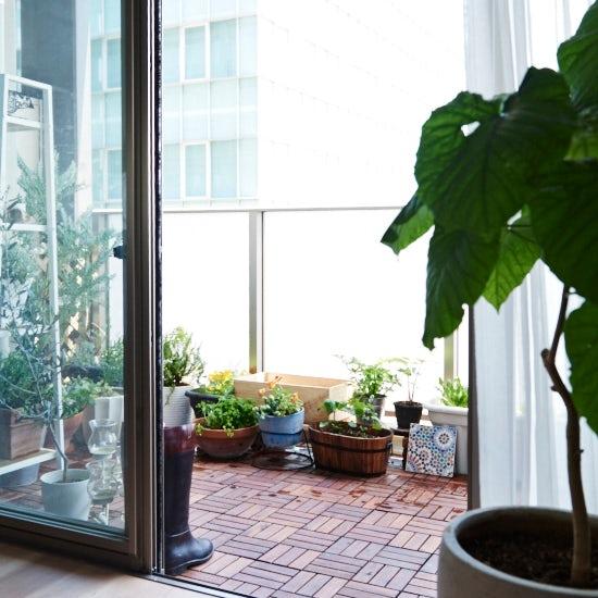 veranda_re_coco0117