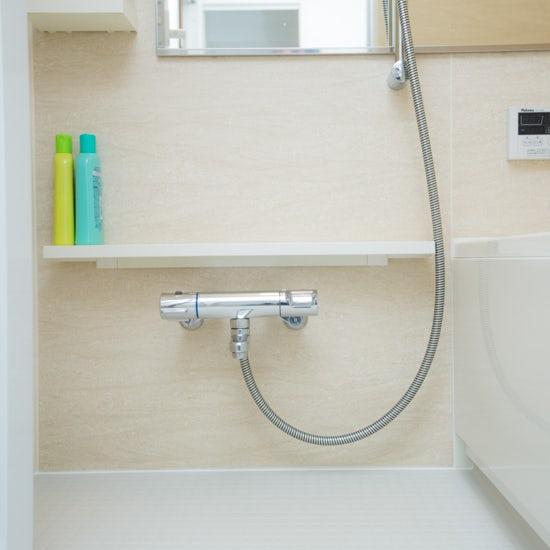 160530bathroom_clean_16