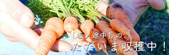 sakanotochu_tokushuichiran_160603