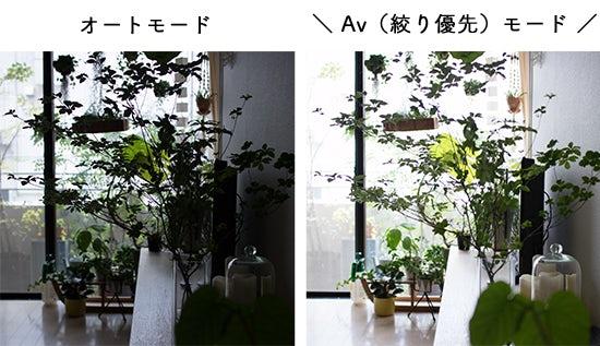 1608_canon_bn_2_hikaku_1