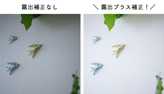1608_canon_bn_2_hikaku_2