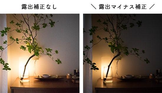 1608_canon_bn_2_hikaku_3
