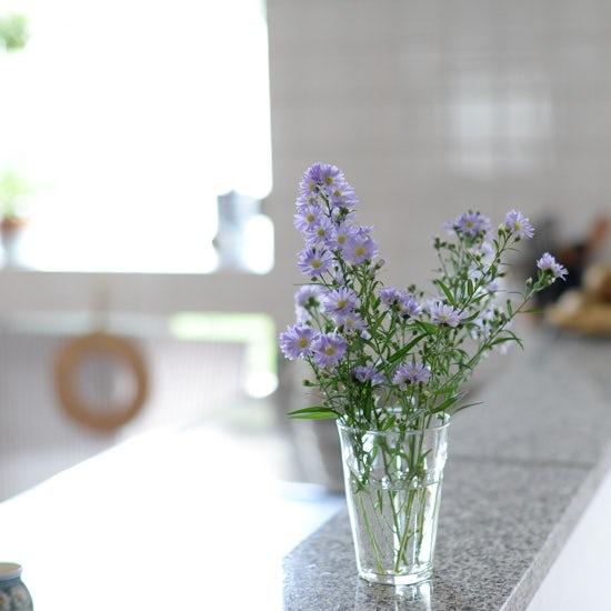【はじめよう、グリーンのある暮らし】第1話:まずは第一歩、お花を飾ろう