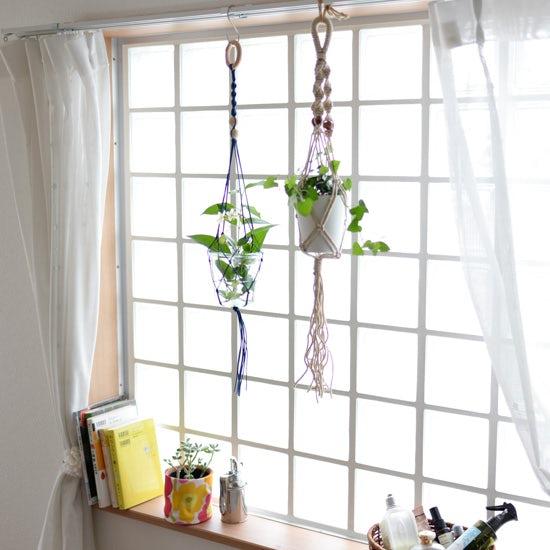 【はじめよう、グリーンのある暮らし】第3話:吊るして楽しむ、ひと工夫