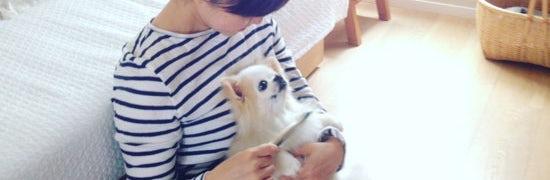 uchiinu_kumazaki_161024