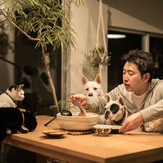 【我が家のイヌとネコ】第19話:犬がだいすき!小さな頃からムツゴロウさんに憧れて、犬4匹+猫2匹と暮らす大家族。