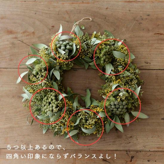 dryflower_170130_2