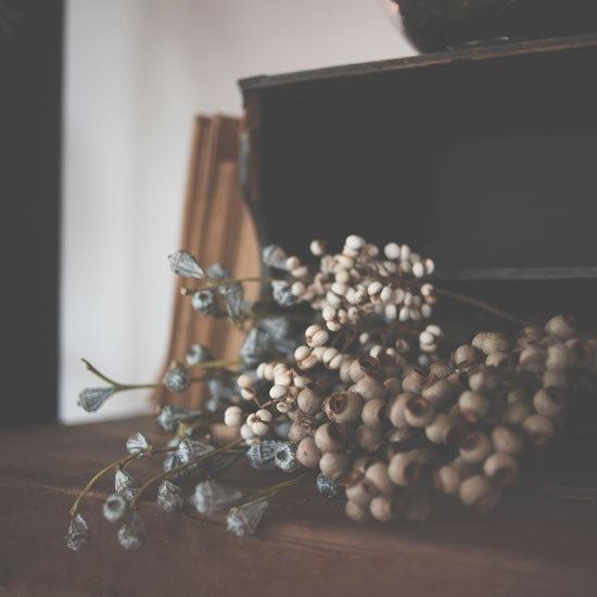 dryflower_0208_9