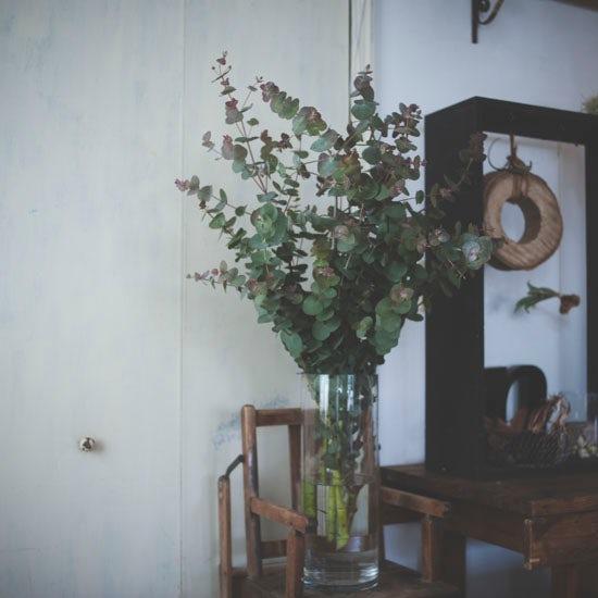 dryflower_017