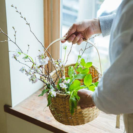 【花と暮らそう、春】第2話:季節感のあるお部屋へ。枝ものの上手な生け方