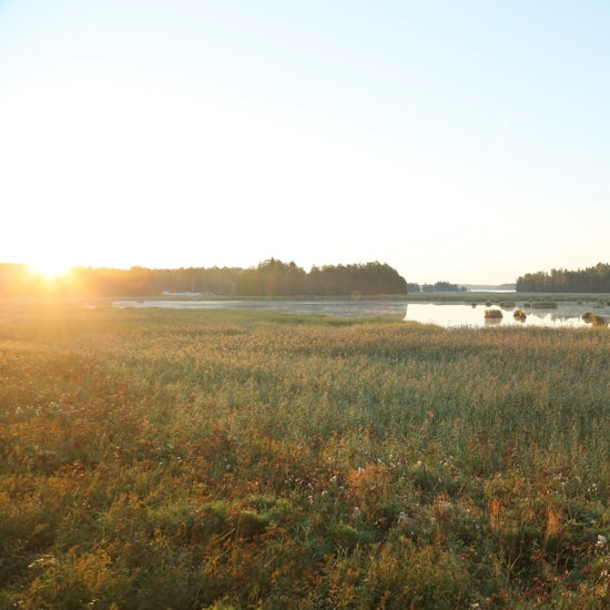 【ご機嫌をつくるモノ】夏の湿原も冬のオーロラも!北欧旅行に欠かせない旅の道具(フォトグラファー かくたみほさん)