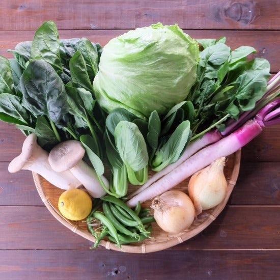 【ただいま収穫中!】宅配野菜をおいしく保存できる!八百屋が教えるかんたんポイント
