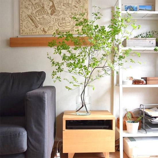 【スタッフの愛用品】枝ものも安心して飾れるフラワーベースで、家に新しい景色ができました。