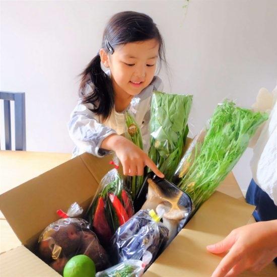 【ただいま収穫中!】宅配野菜、子どもがいるお家ではどうしてる?お昼ご飯を覗いてみました。