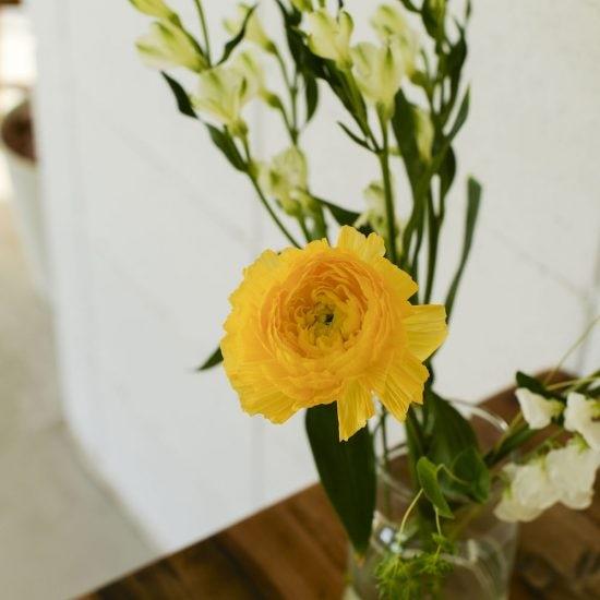 【僕のおやつ日記】「ほんの少し」が効果大?花とおやつのいい関係。