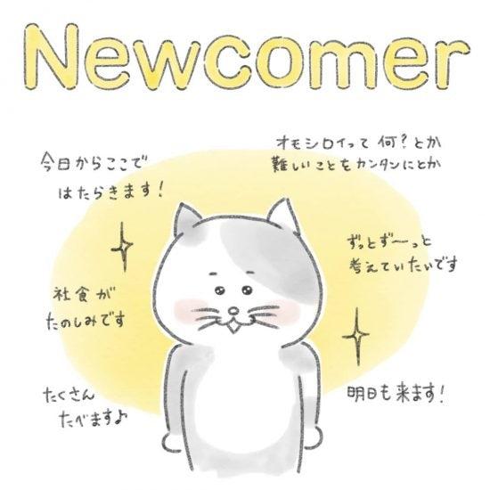 【ネコかるたイングリッシュ】「N」から始まる…「newcomer」