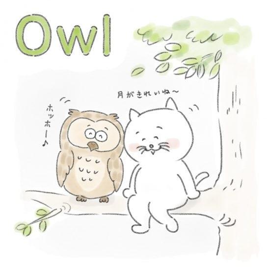 【ネコかるたイングリッシュ】「O」から始まる…「owl」