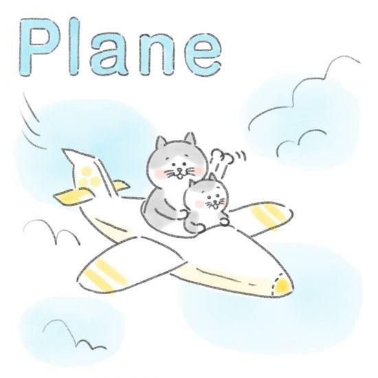 【ネコかるたイングリッシュ】「P」から始まる…「plane」