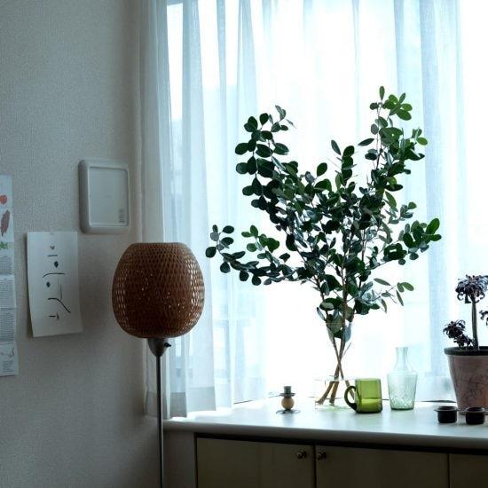 【クラシコムmovie】初めてでも気軽にできる♪ 冬の模様替えは「枝もの」ではじめませんか?
