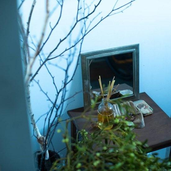 【私らしい部屋づくり】第3話:夫婦の趣味を共存させるため。個性たっぷりのグリーンを、インテリアのアクセントに