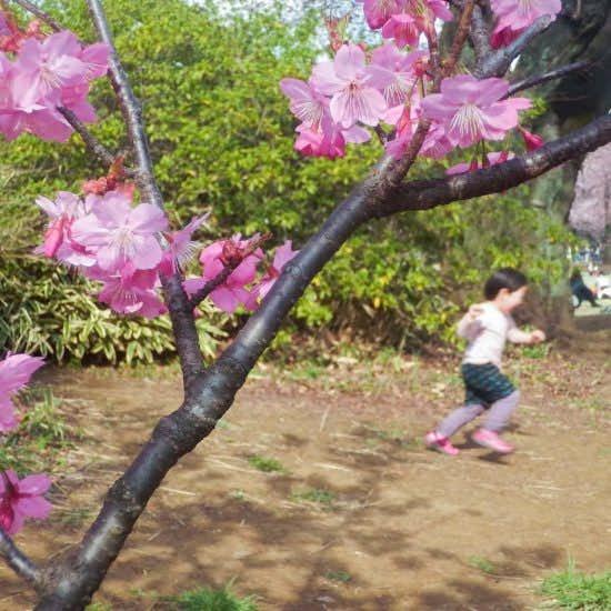 【スタッフコラム】4月を迎えるための「進級式」