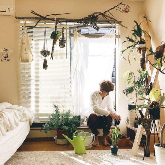 【わが家の朝支度】ぼーっとする時間が、良い仕事につながる。植物と心地よく過ごす朝時間
