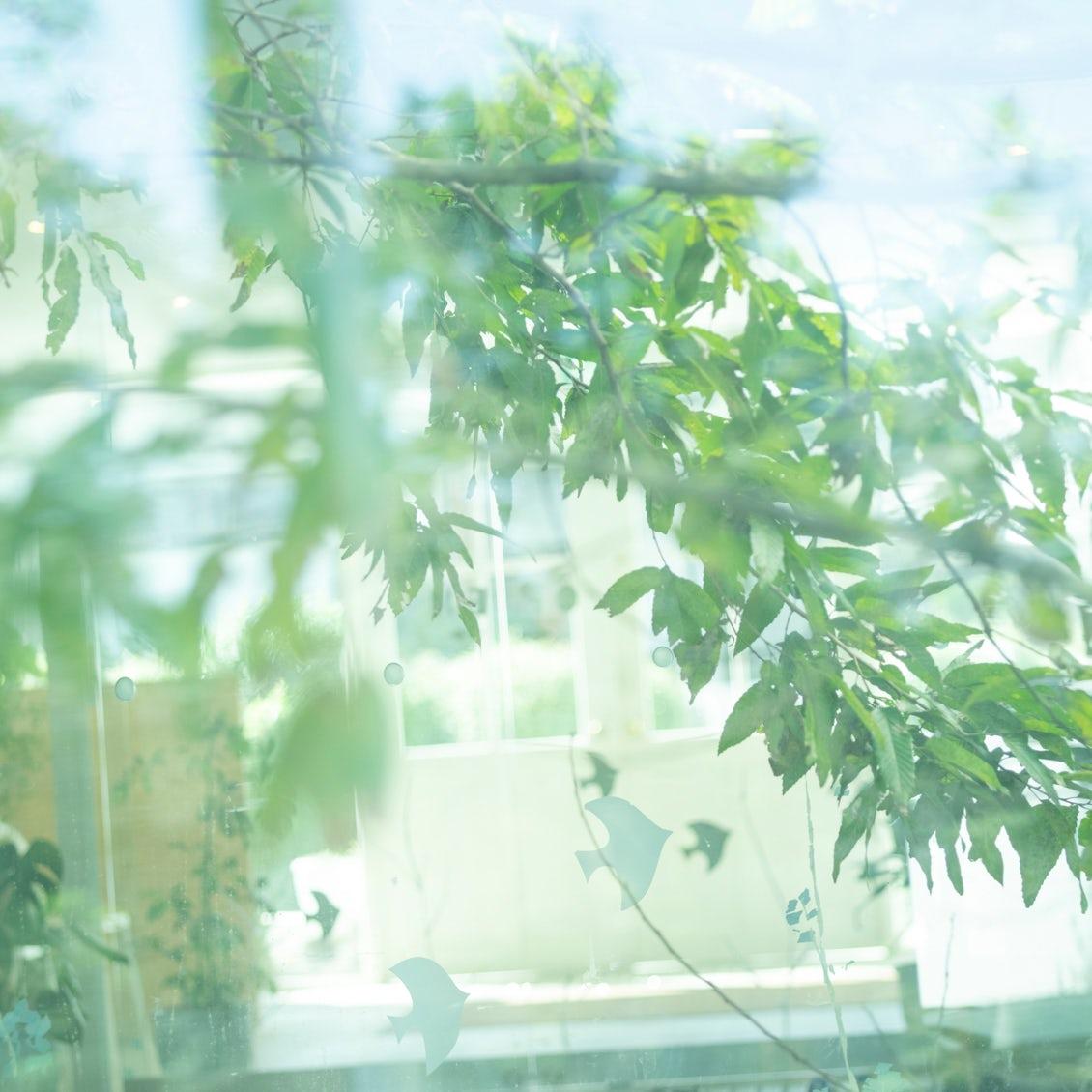 【メルマガ限定】今は人生の通過点。「しぜんの国保育園」園長・齋藤美和さんのエッセイが始まります。