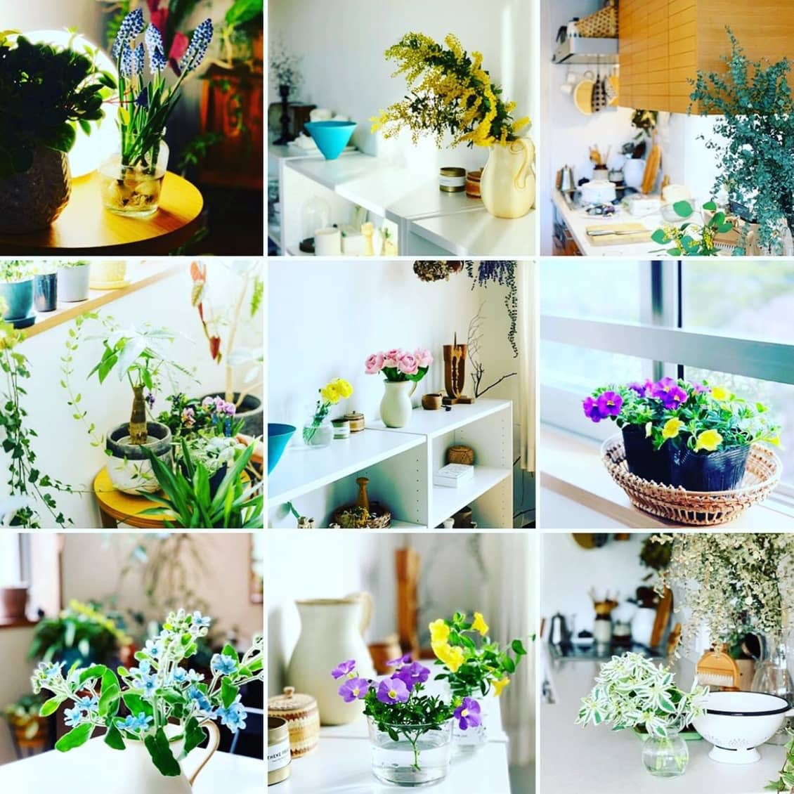 【店長の今日のエッセイ】1年のあいだ花の写真を撮り続けて、今こんなことを思う。