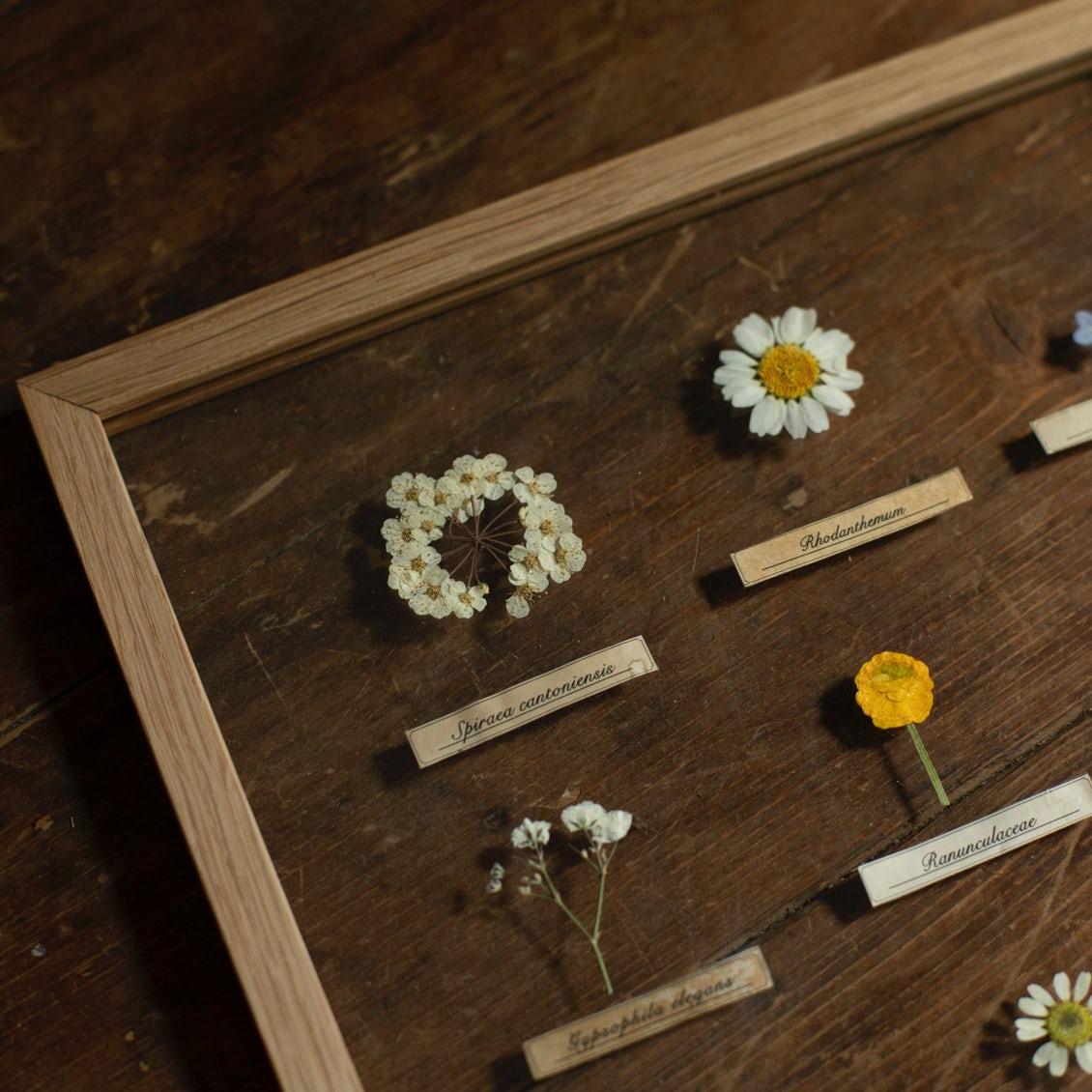 作り方 押し花