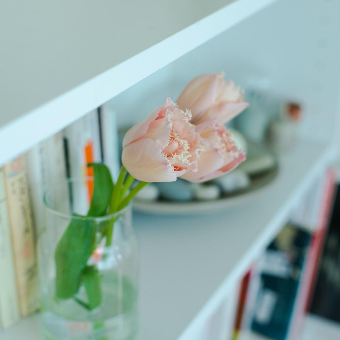 【花と暮らすを、始めたい】第4話:花を、明日も楽しむために知っておきたいこと
