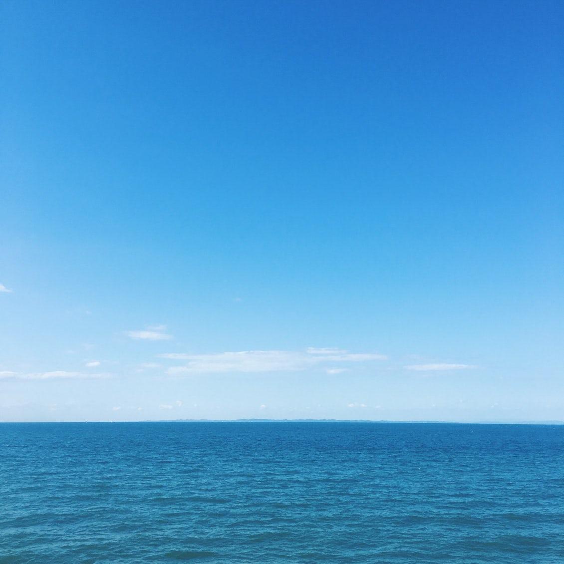【スタッフコラム】深海の生き物が気になる。