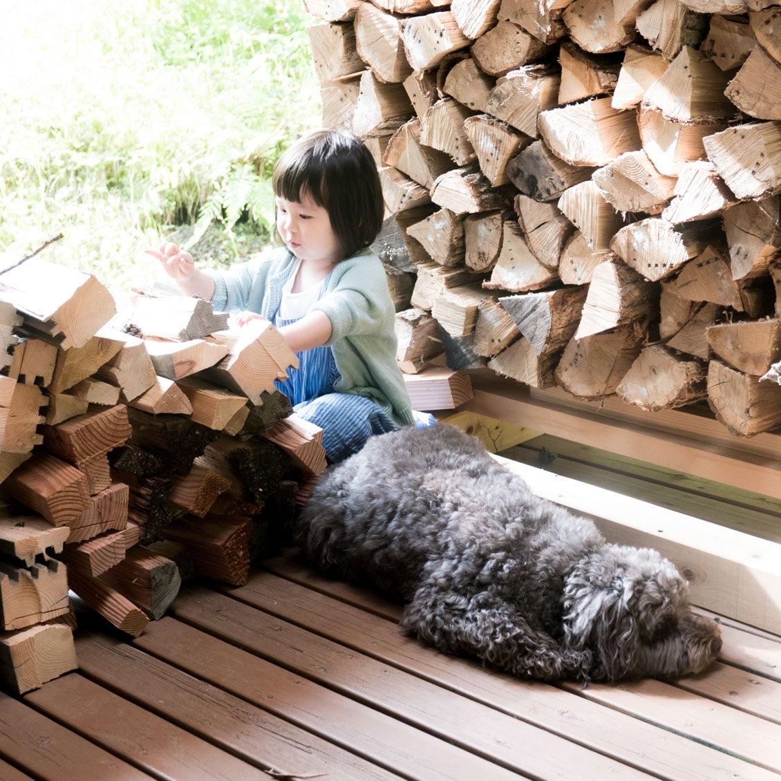 【うちのイヌ、うちのネコ】娘さんと犬のやりとりが微笑ましい。写真家・松元絵里子さんちの「ネル」