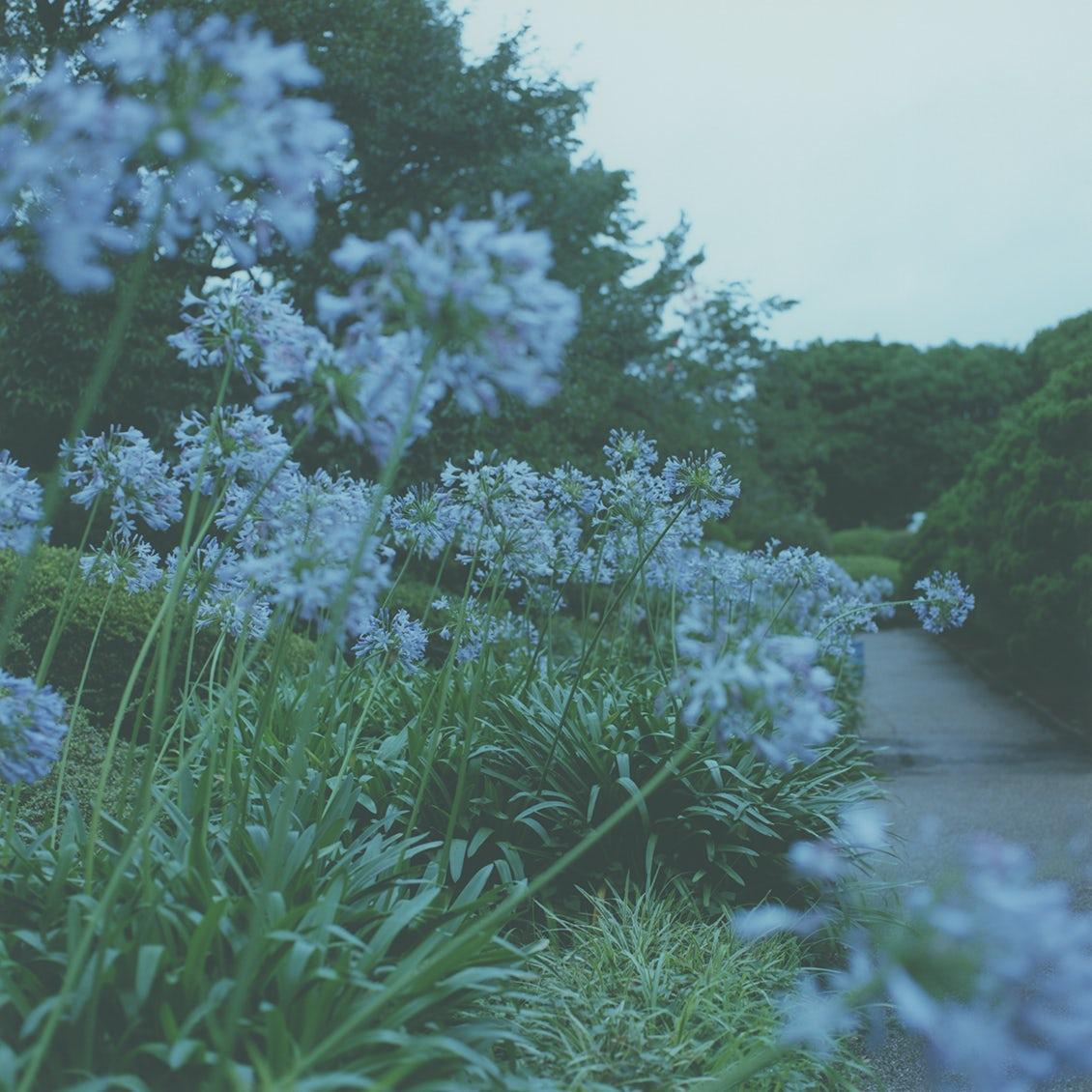【44歳のじゆう帖】夏のセルフケア