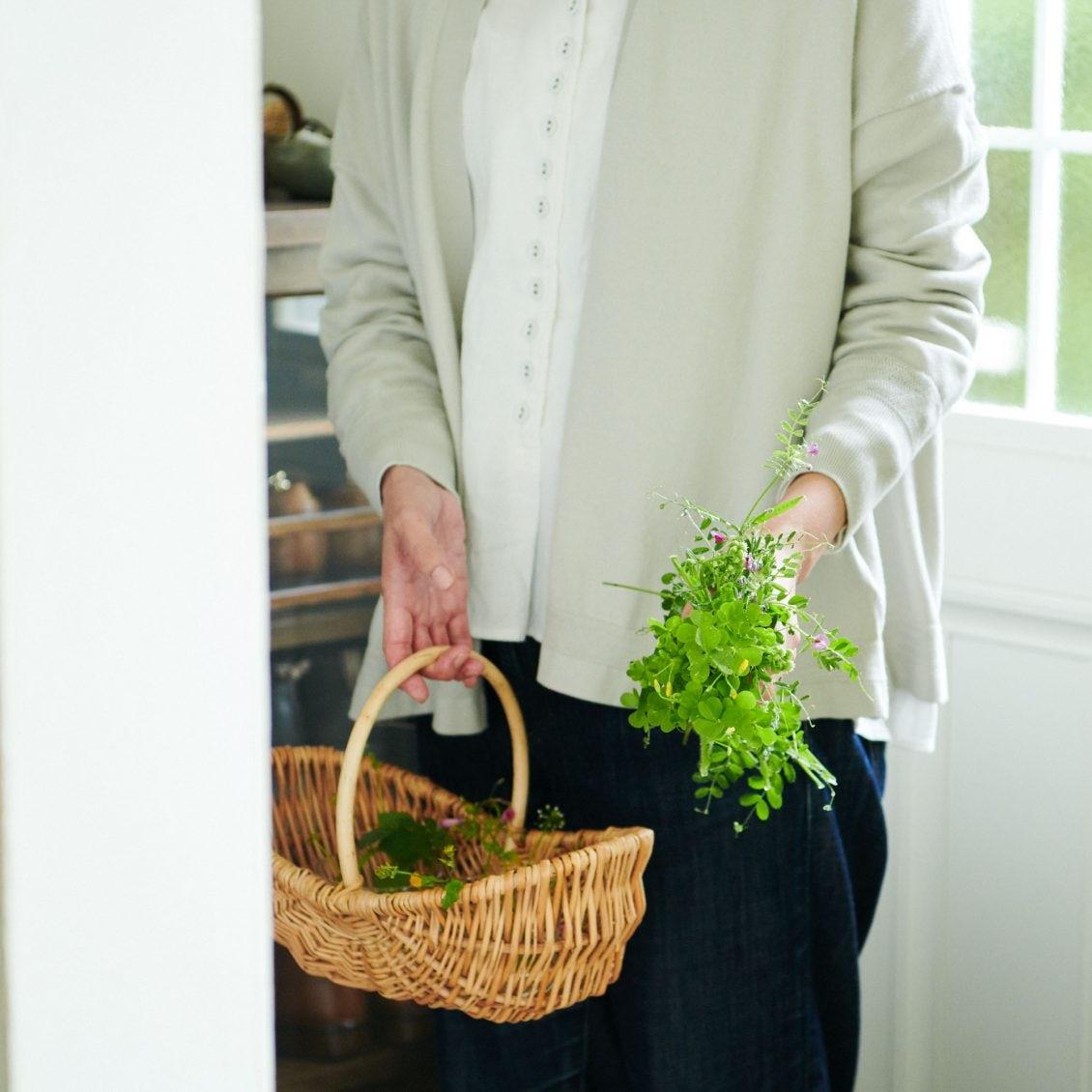 【今日、何しよう?】第3話:お散歩ついでに摘んで。小さくてかわいい野の草花、家に飾ってたのしむなら。