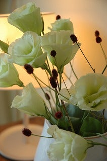 ワレモコウの花
