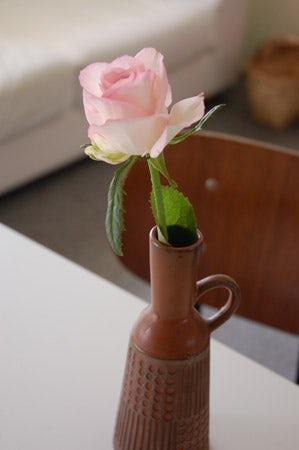 クラシノート-植物とお花のある暮らし-  (東京都 店長佐藤)